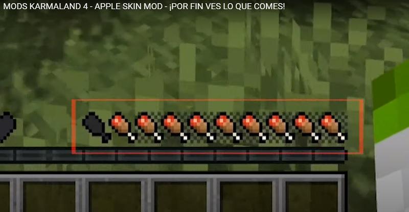AppleSkin Mod